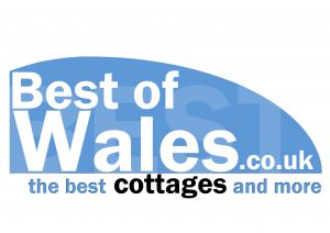 logo_best_of_wales